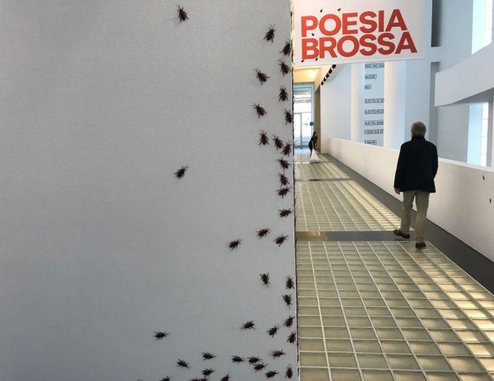 Joan Brossa Poetry in 3D